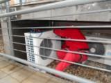 Servis                                                       klimatizačných zariadení, Bratislava - SINTECH